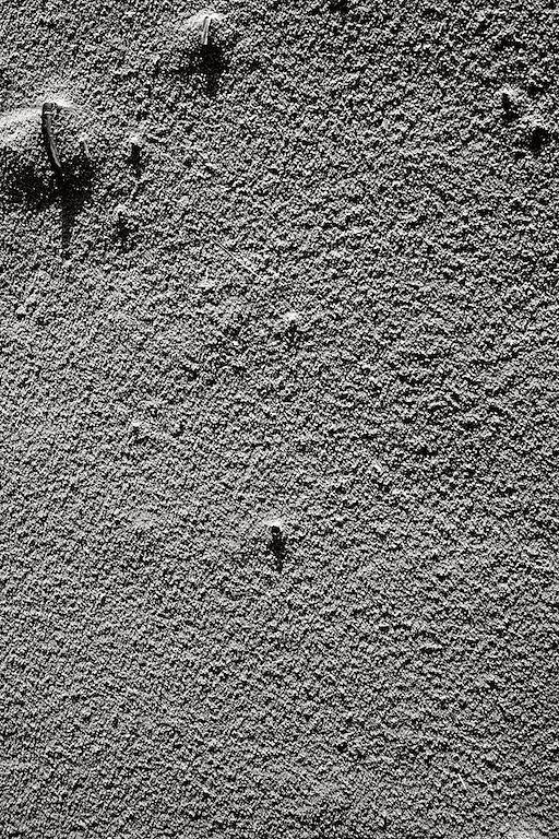 gerlingmeinolfzeit2-pmg-0508-2011-12.jpg